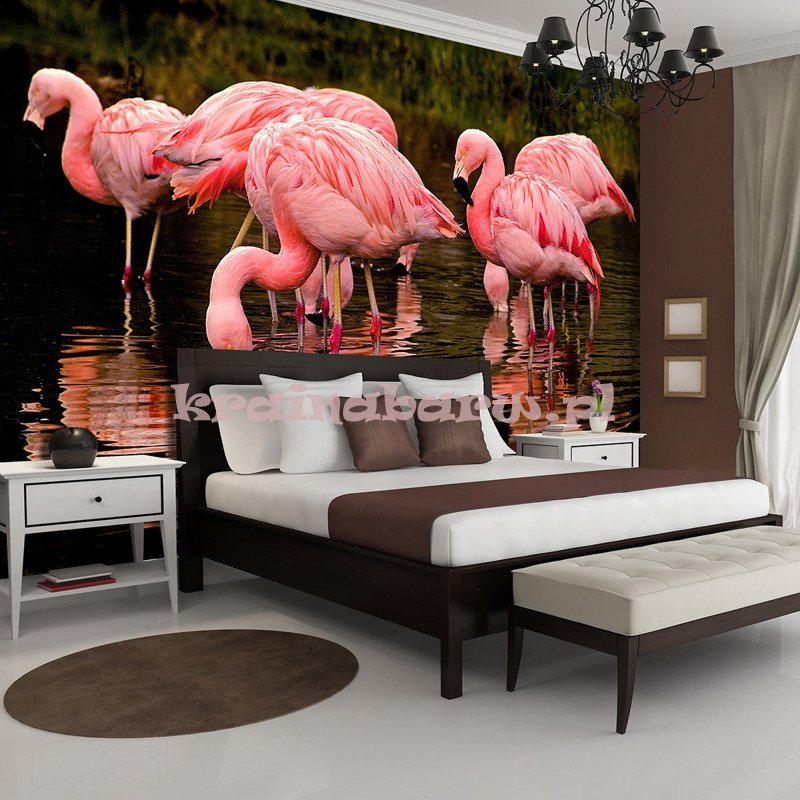 fototapeta 3616 flamingi consalnet sklep tanie. Black Bedroom Furniture Sets. Home Design Ideas