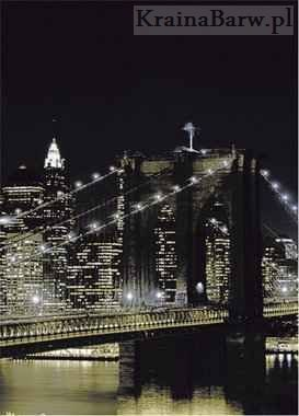 Fototapeta 97331 New York at night